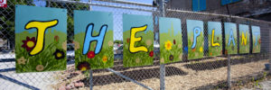 the plant fence painting